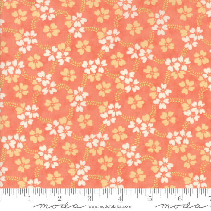 Peach Daisy Rings Fabric from Ella & Ollie Collection at Cherry Creek Fabric