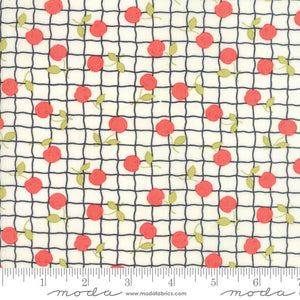 Cream Red Apple Picnic Fabric