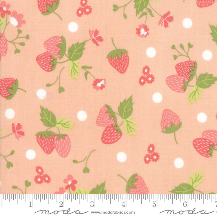 Strawberry Jam Fabric - Pink Strawberry Fabric - Corey Yoder - Moda Fabric - Strawberries Fabric - Pink Fabric - Fabric by the Yard from Cherry Creek Fabric & Crafts Collection at Cherry Creek Fabric