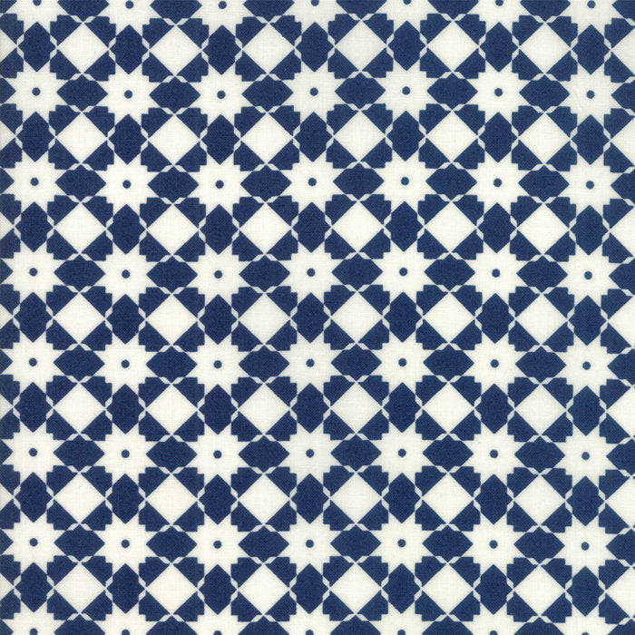 Navy Weave Fabric from Garden Variety Collection at Cherry Creek Fabric