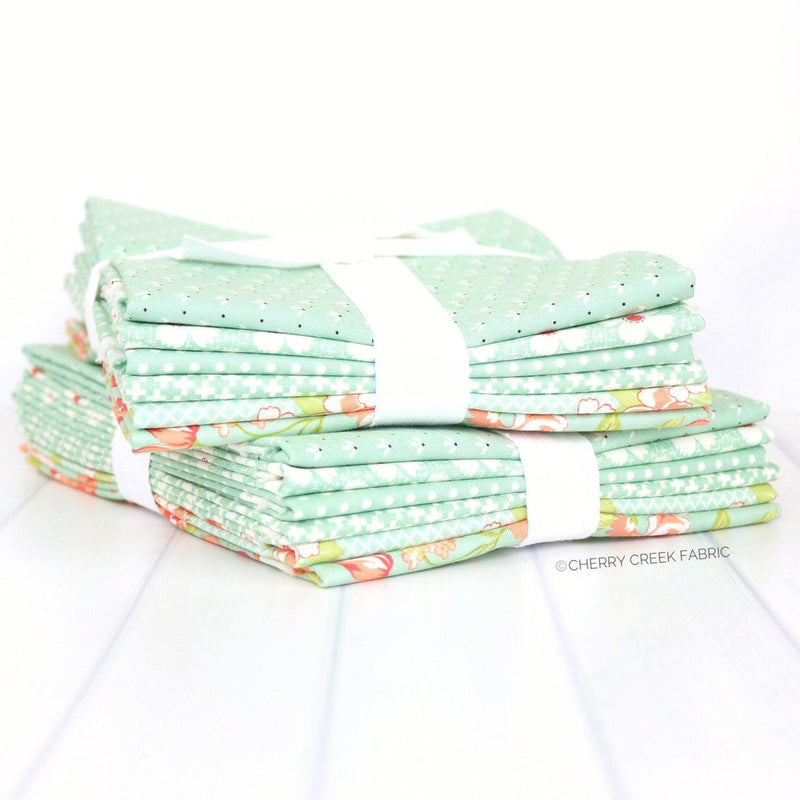 Farmhouse II Aqua Half Yard Bundle - 6 pieces from Farmhouse II Collection at Cherry Creek Fabric