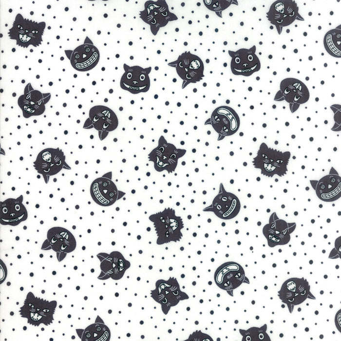 Black Dotty Cat Fabric from Dot Dot Boo Collection at Cherry Creek Fabric