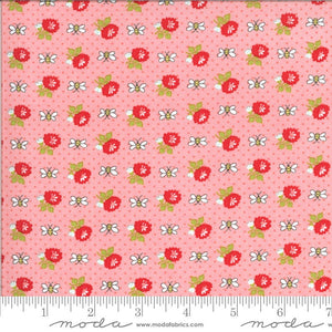 Pink Bees Fabric | Shine On