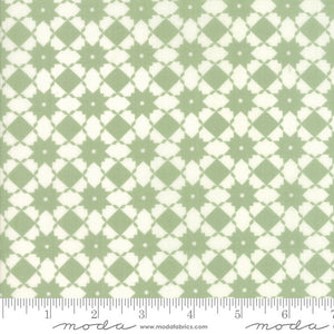Green Weave Fabric from Garden Variety Collection at Cherry Creek Fabric