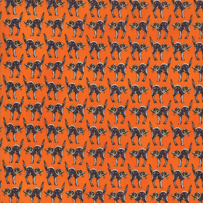 Orange Creepy Cats Fabric
