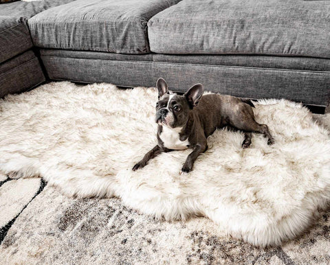 Faux Fur Runner Bed For Dogs