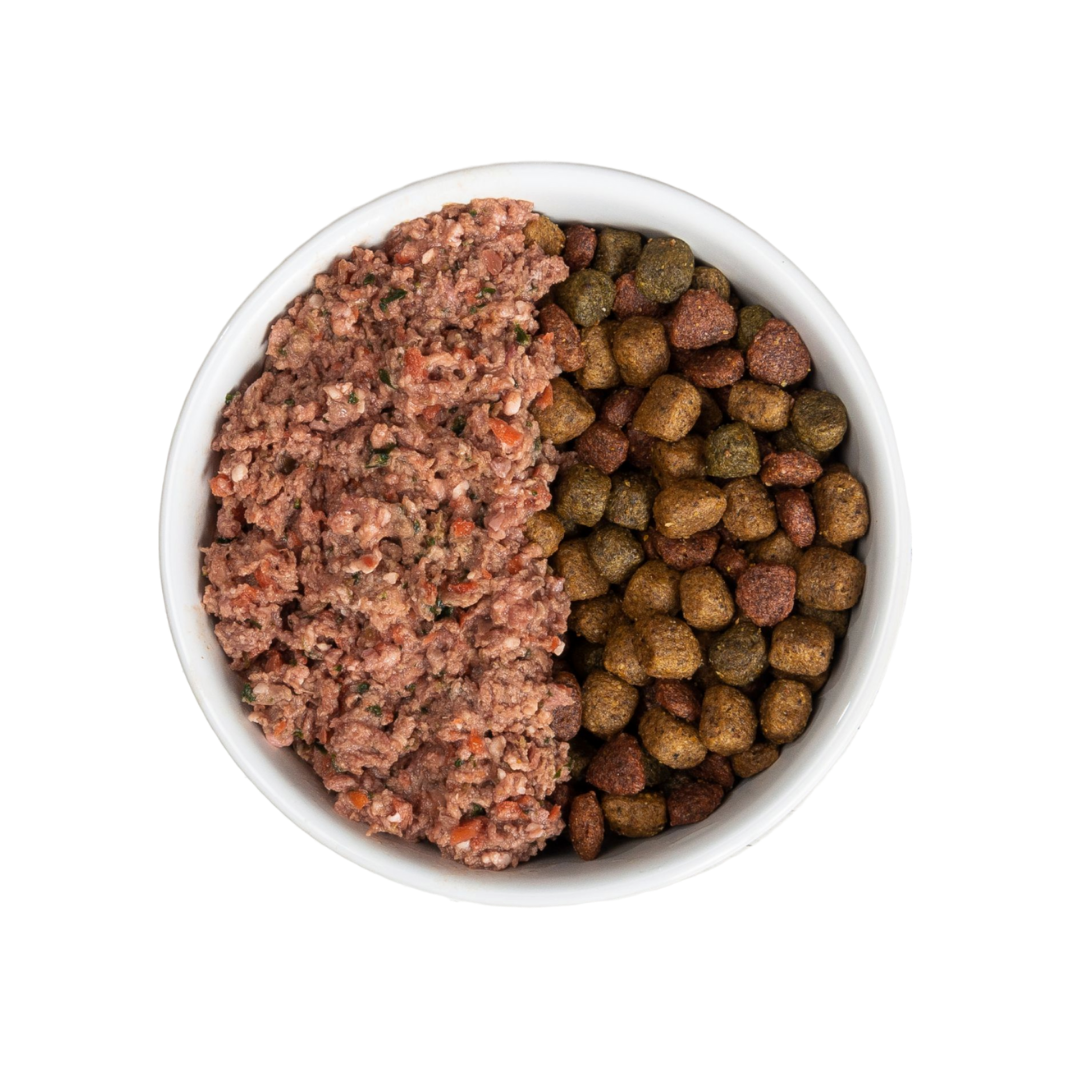guide for mixing raw dog food and kibble