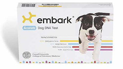 Embark DNA Test For Dogs