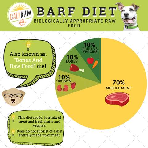raw dog food diet for dogs infograph