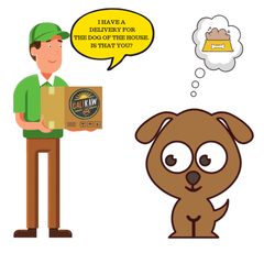 about Raw dog food delivery service