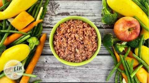 healthy complete and balanced dog food