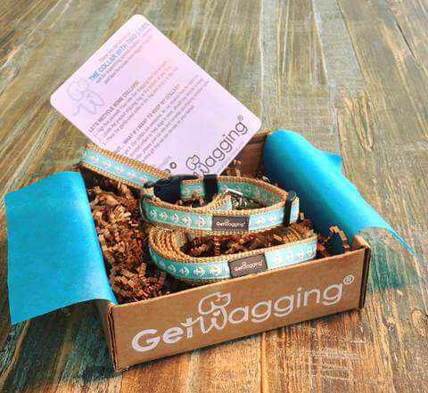 Get Wagging Subscription Box