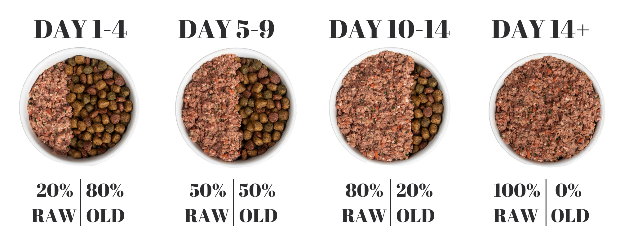 Raw food for dogs Transition Guide