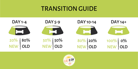 Transition to a raw diet infograph