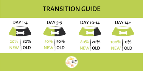 How to transition to raw Dog Food Infograph