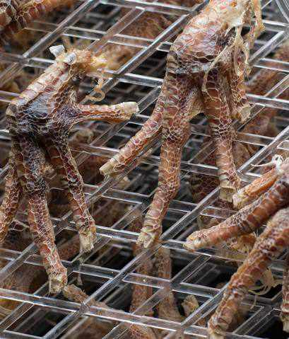 Chicken feet for dogs