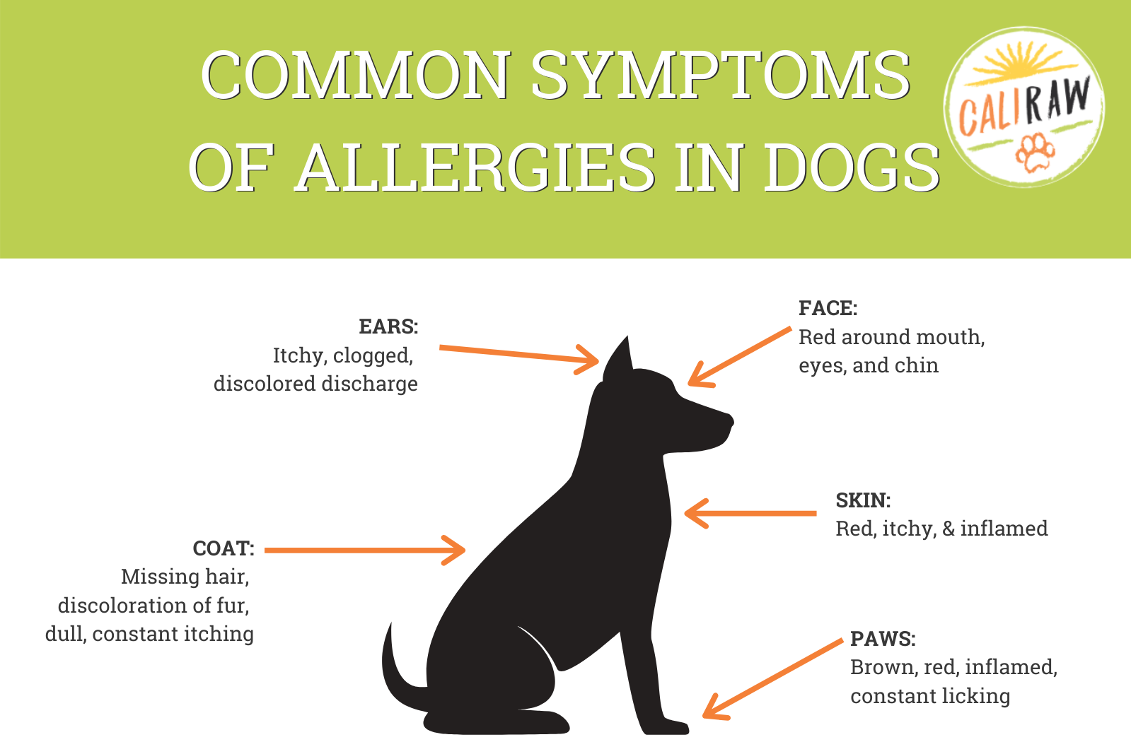 allergy symptoms in dogs