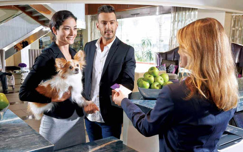 best dog friendly hotel los angeles