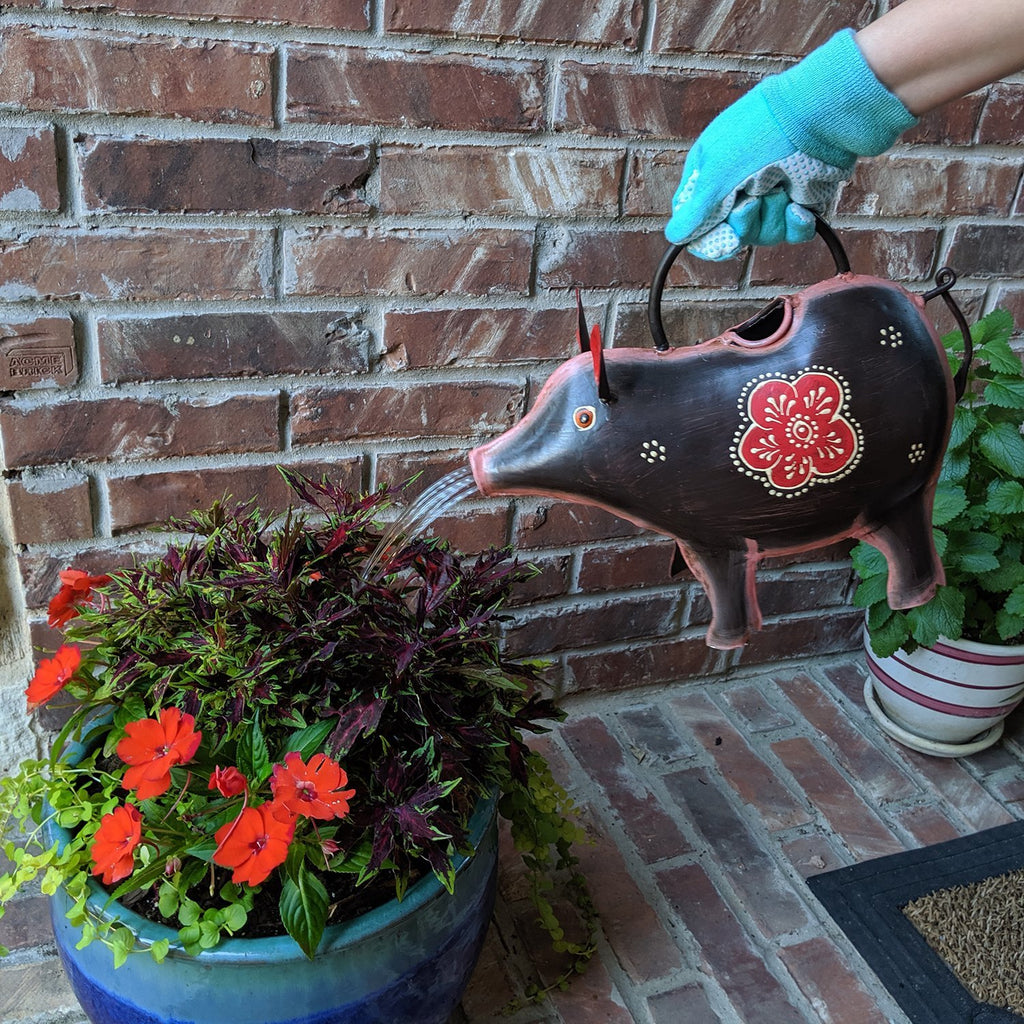 Javelina Pig Watering Can for Indoor or Outdoor Use - Farmhouse World