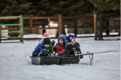 Snow Sled Ideas for Toddlers and Kids