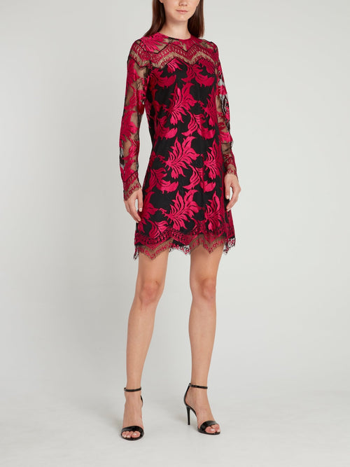 Fuchsia Embroidered Lace Dress