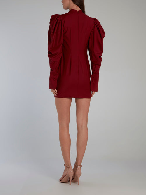 Burgundy Puff Sleeve Mini Dress
