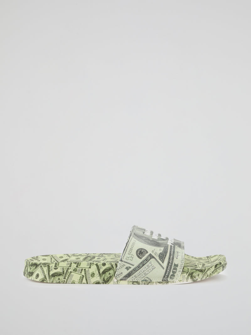 Dollars All Over Printed Slides