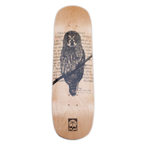 "OWL Great Gray 8.25"" deck"