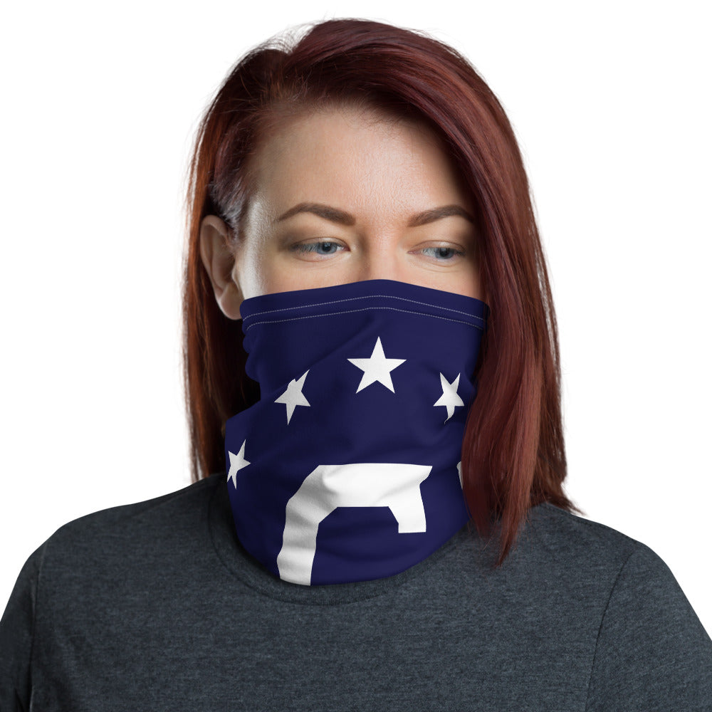 Consular Flag Face Mask