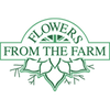 Electric Daisy Flower Farm