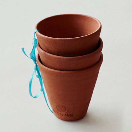 Terracotta Seedling Pots