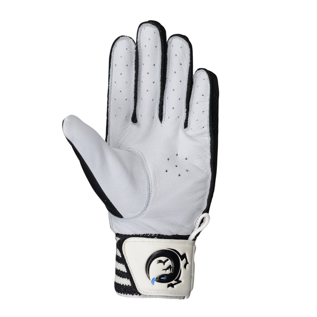 Deluxe Signature Edition Indoor Cricket Gloves