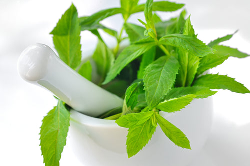 "Cooling Peppermint: The ""tingle"" in the BFN Licorice Root Elixir"