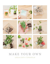 Load image into Gallery viewer, DIY Terrarium Kit With Live Succulent - Green Earth Terrarium LLC