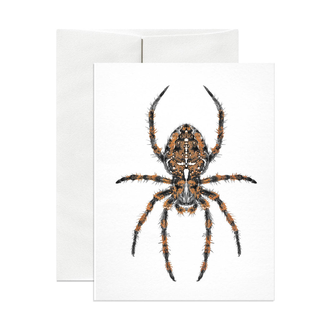 Diadem Spider Greeting Card