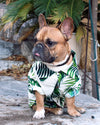 Havana Palms BBQ Shirt - Animal Planet