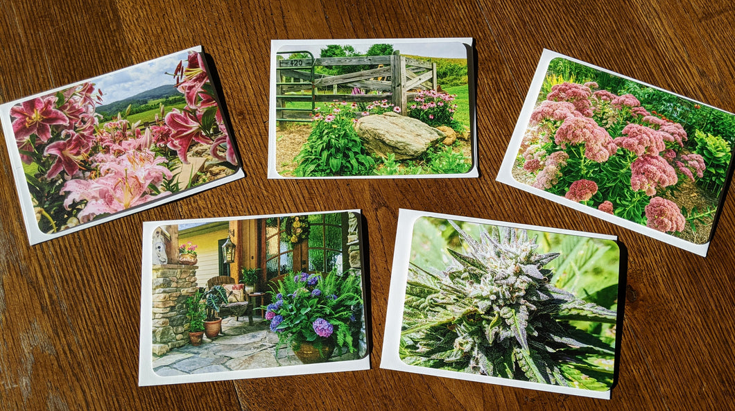 Note Cards - Qberry Farms Scenes