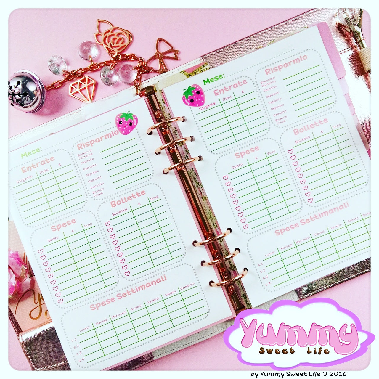 A5 Frola Monthly Expenses Insert