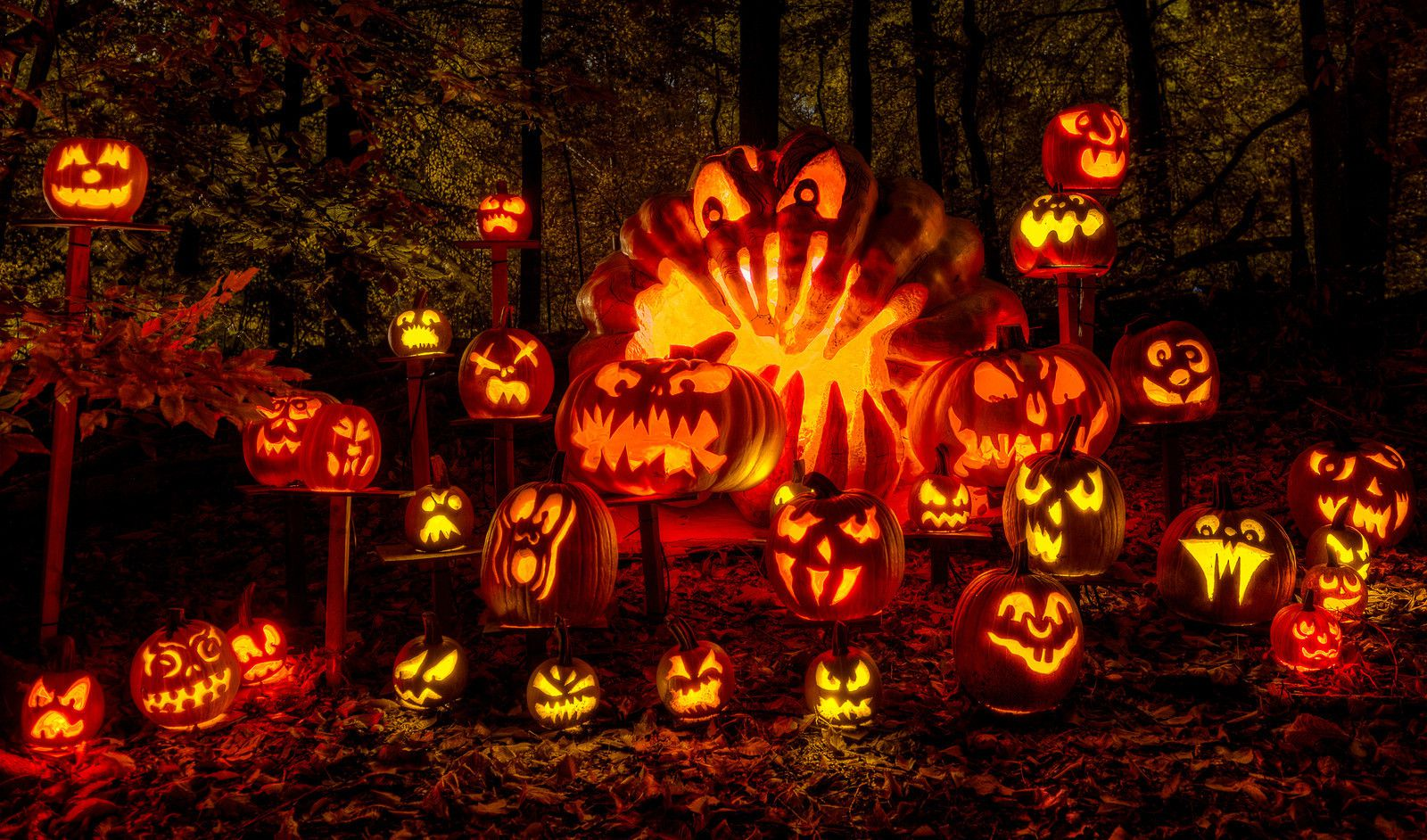 Pumpkin Carving Made Easy | Pumpkin Carving Ideas and Accessories | Free Stencils!