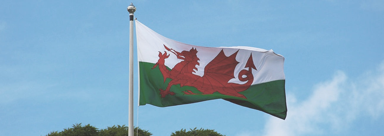 Welsh Party Supplies