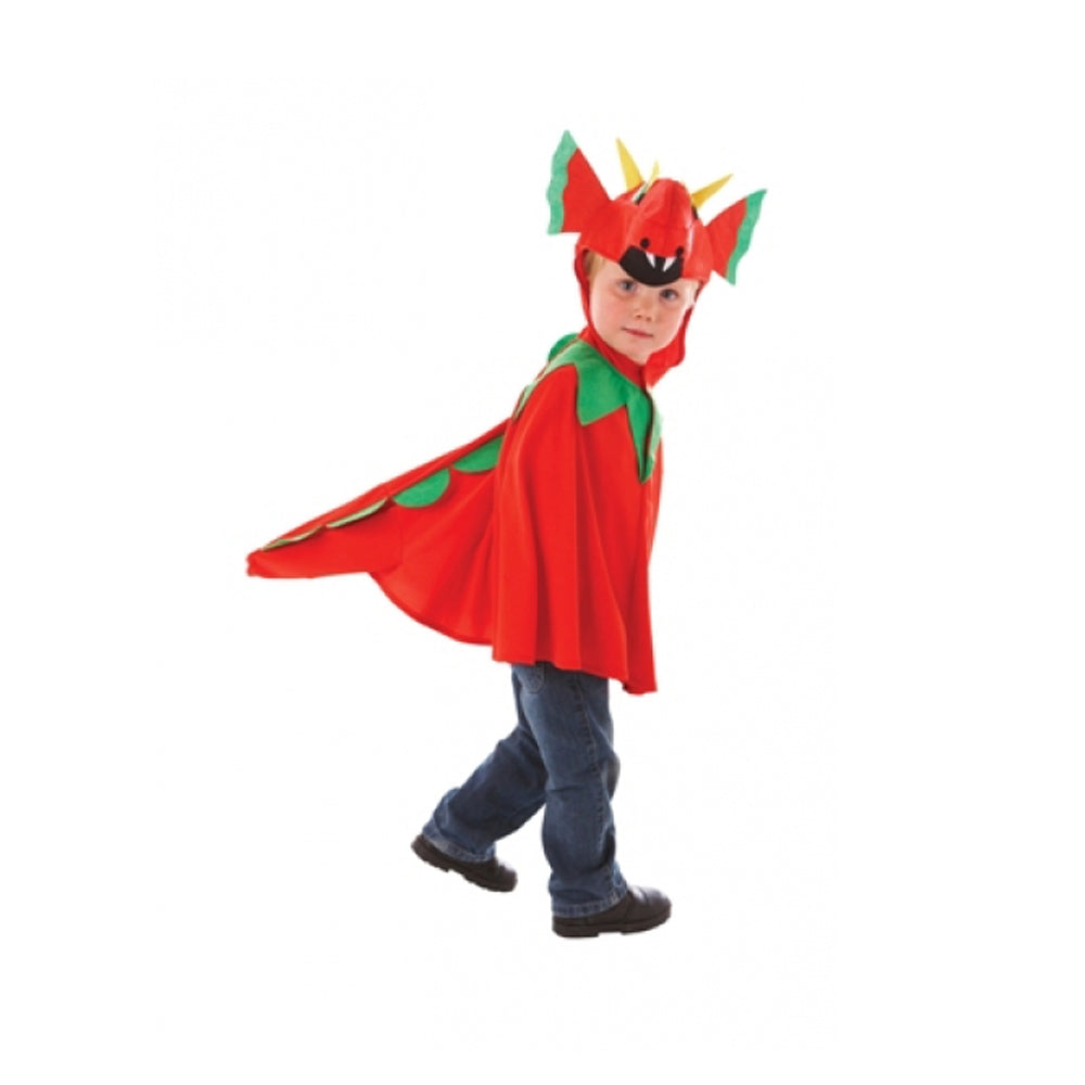 Children's Friendly Dragon Costume