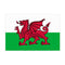 Giant Welsh Cloth Flag 8ft x 5ft