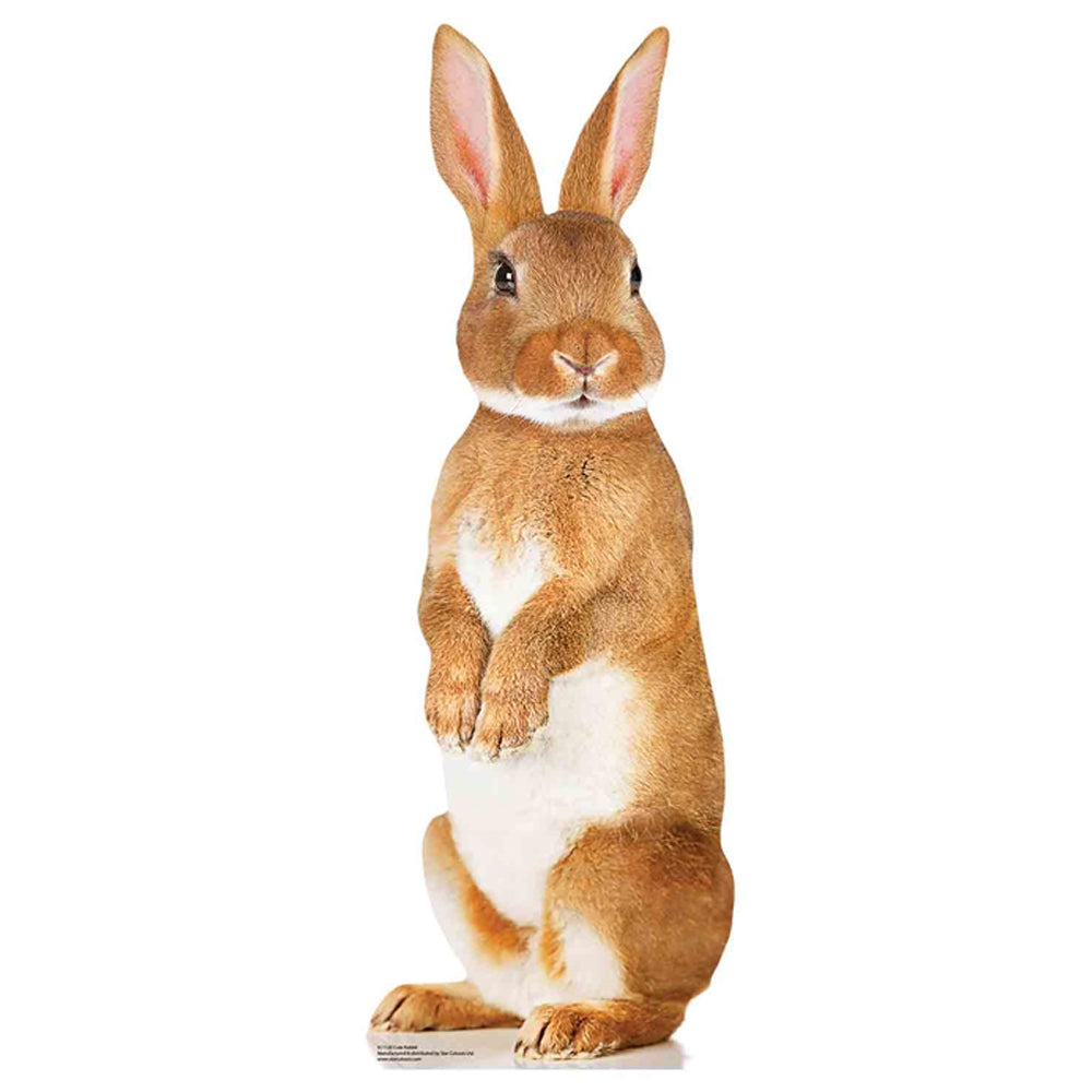 Cute Bunny Rabbit Cardboard Cutout Decoration - 90cm