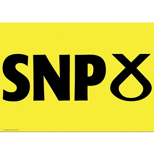 SNP Party Poster - A3