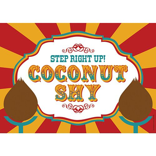 Fundraising Coconut Shy Sign - A3