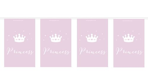 Princess Flag Bunting- 2.4m- 10 Flags