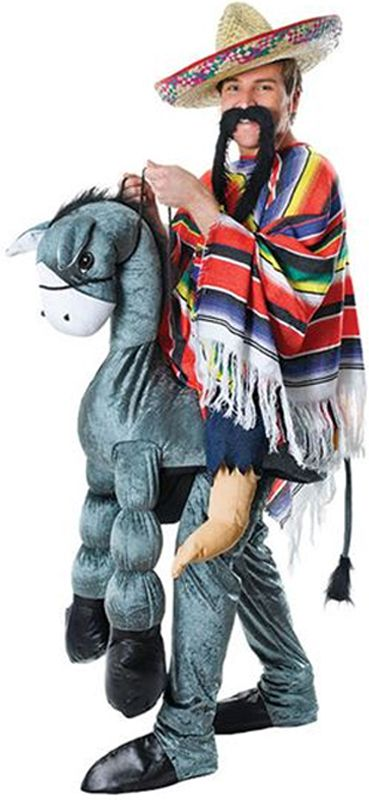 Amigo on Donkey Costume