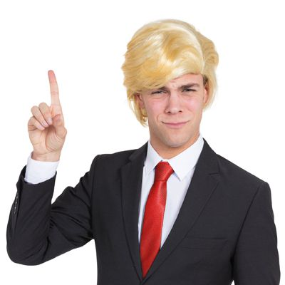Donald Trump Style Wig