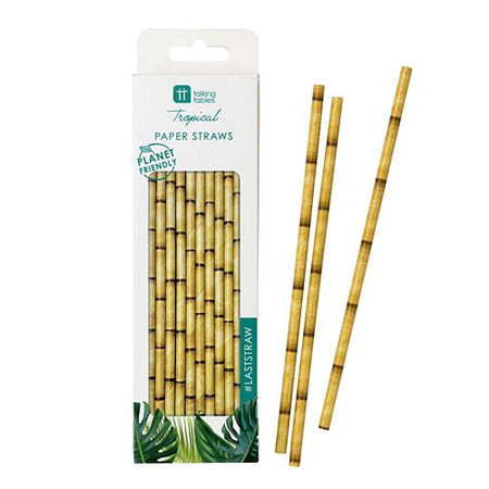 Fiesta Bamboo Paper Straws - Pack of 30