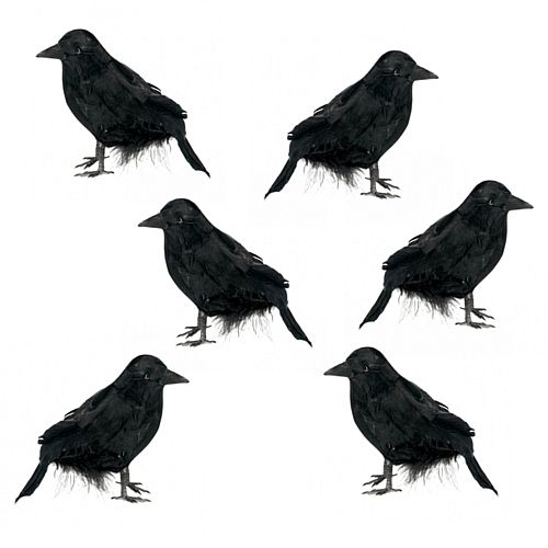 Halloween Feathered Raven Prop Decorations - 10cm - Pack of 6